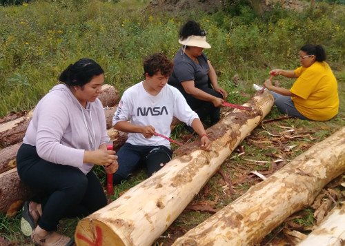 Dakota volunteers from the Lake Traverse-Sisseton-Wahpeton Reservation stripping bark off the columns for earthloges in 2019.