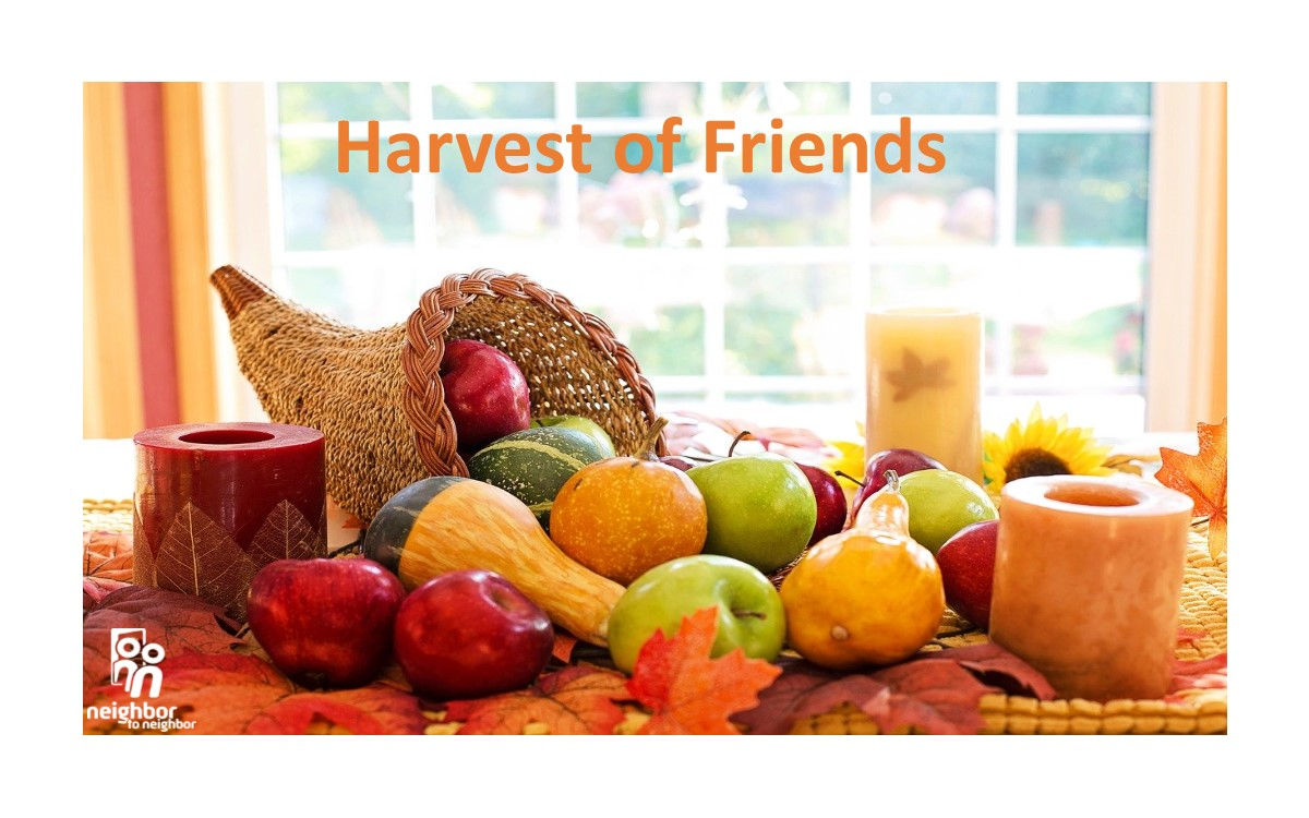 Harvest of Friends 2019