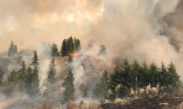 Cougar Creek Fire