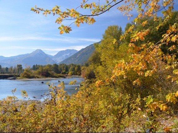 Autumn Ambles