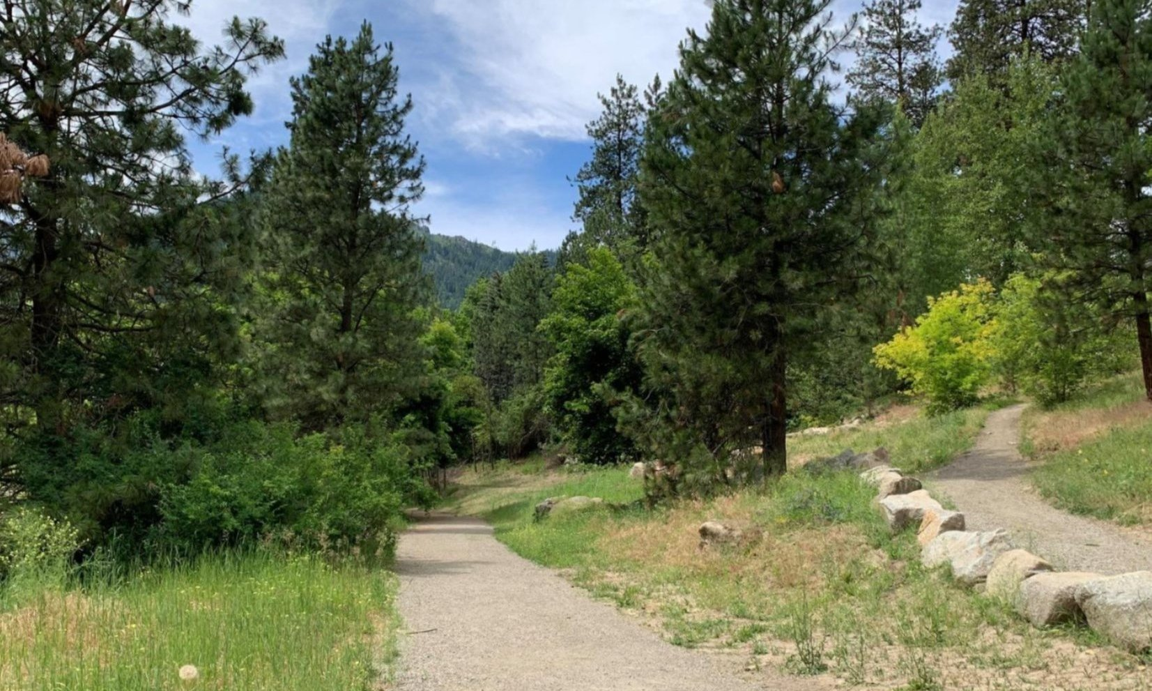 Guided Nature Walks